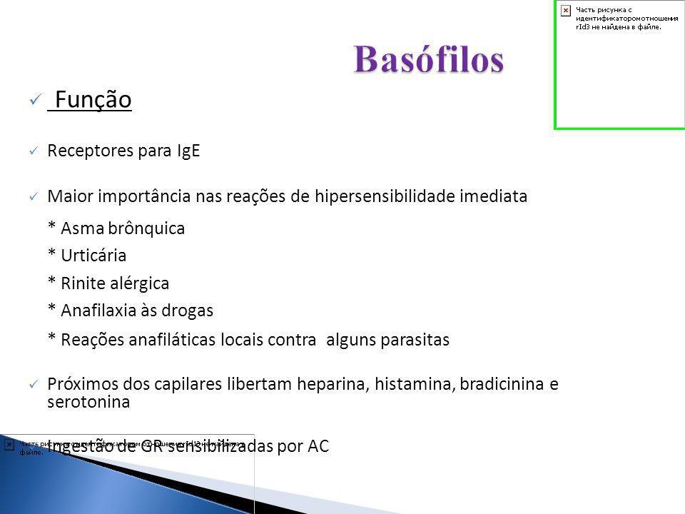 Basófilos Função Receptores para IgE