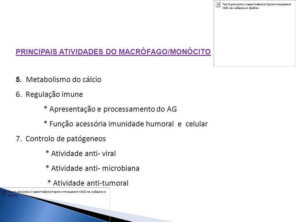 * Apresentação e processamento do AG