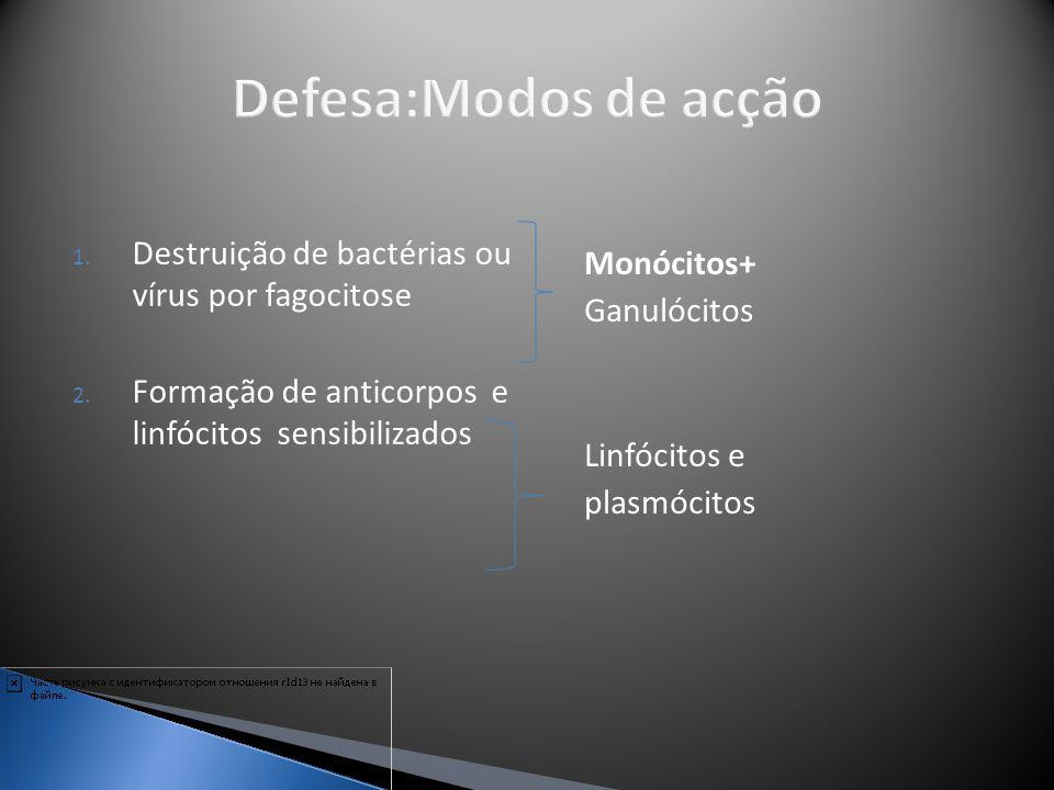 Defesa:Modos de acção Destruição de bactérias ou vírus por fagocitose