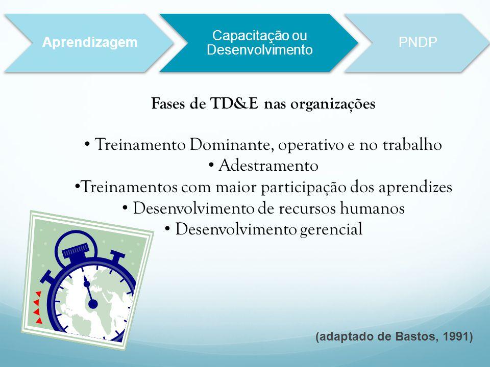 Fases de TD&E nas organizações