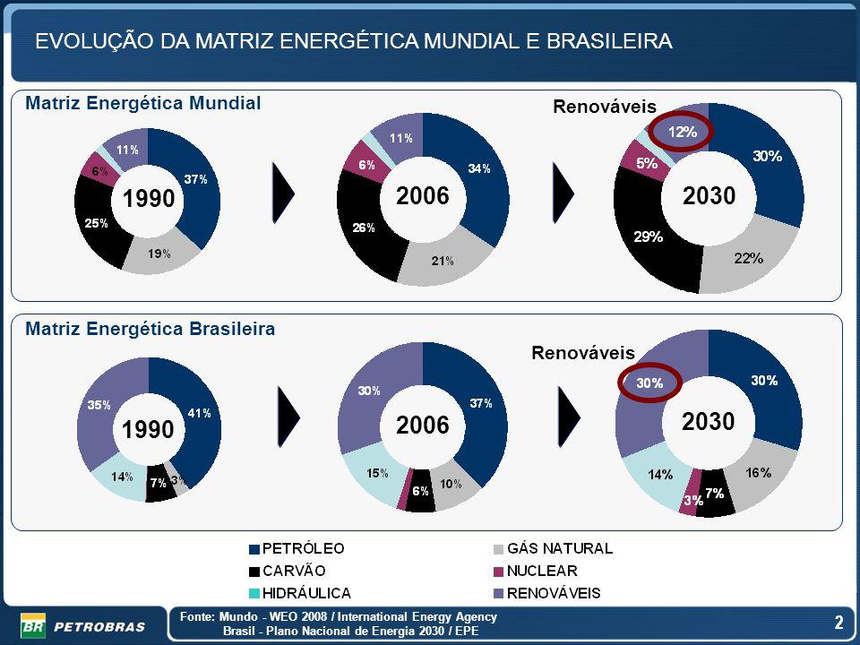 EVOLUÇÃO DA MATRIZ ENERGÉTICA MUNDIAL E BRASILEIRA