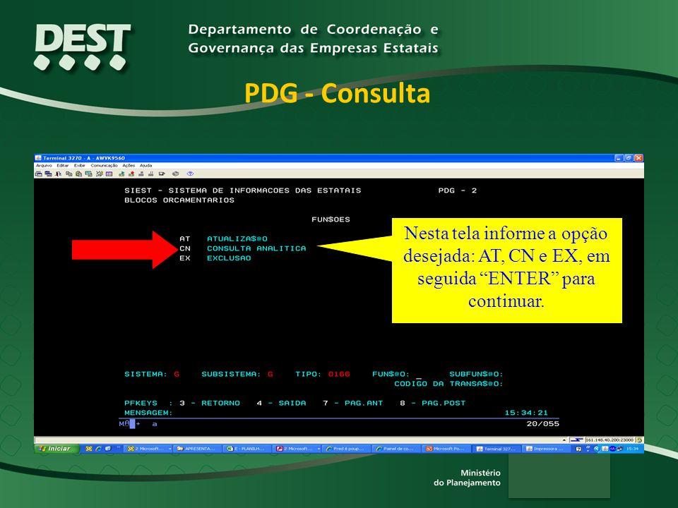 PDG - Consulta Nesta tela informe a opção desejada: AT, CN e EX, em seguida ENTER para continuar.