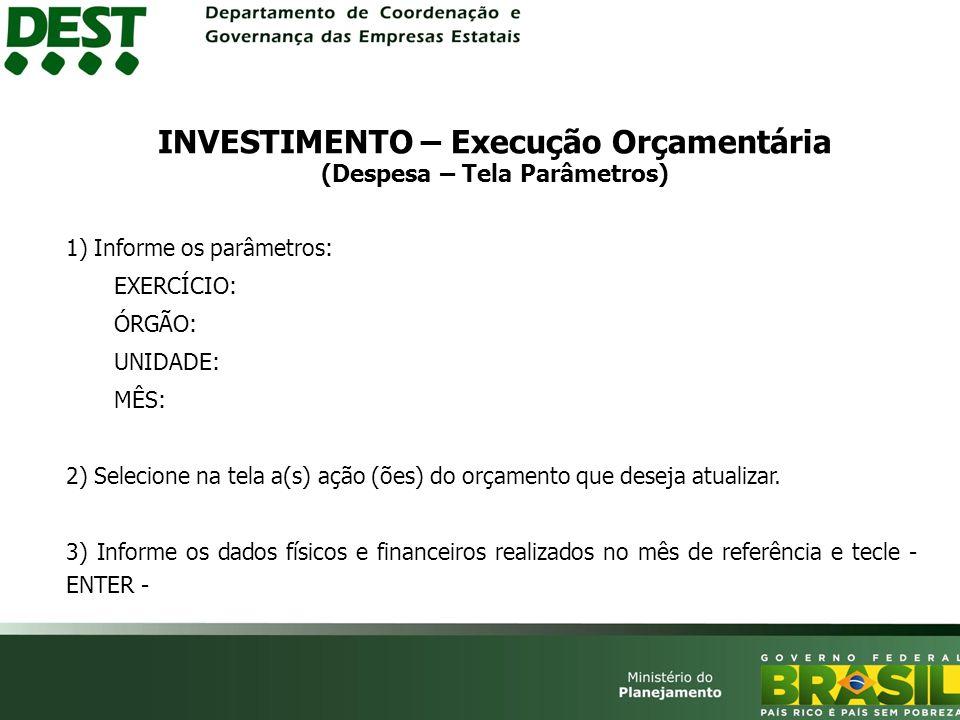 INVESTIMENTO – Execução Orçamentária (Despesa – Tela Parâmetros)