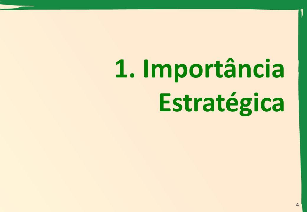 1. Importância Estratégica 4