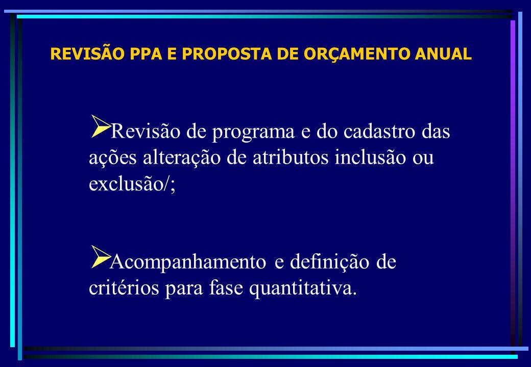 Acompanhamento e definição de critérios para fase quantitativa.