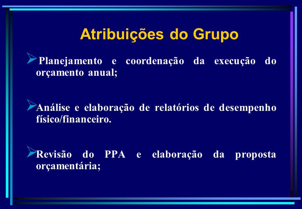 Atribuições do Grupo Planejamento e coordenação da execução do orçamento anual; Análise e elaboração de relatórios de desempenho físico/financeiro.