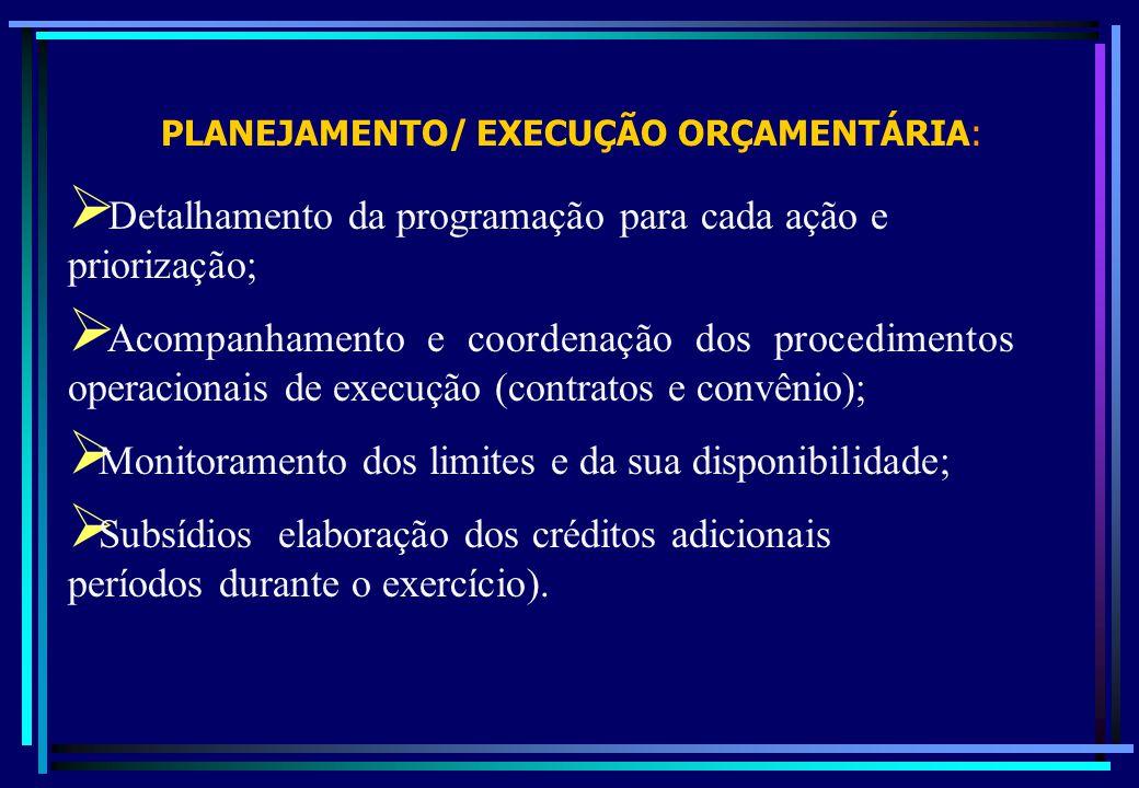PLANEJAMENTO/ EXECUÇÃO ORÇAMENTÁRIA: