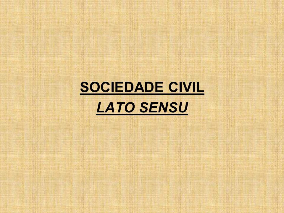 SOCIEDADE CIVIL LATO SENSU