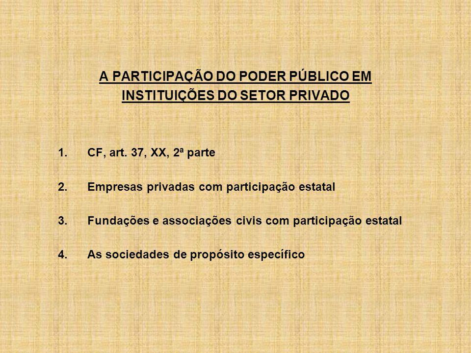 A PARTICIPAÇÃO DO PODER PÚBLICO EM INSTITUIÇÕES DO SETOR PRIVADO