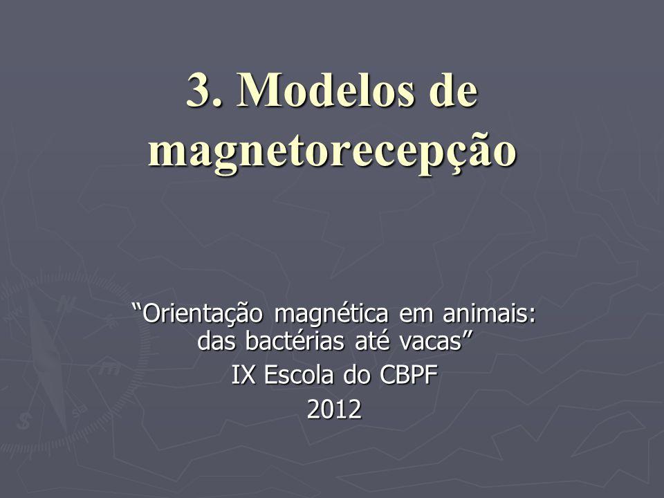 3. Modelos de magnetorecepção