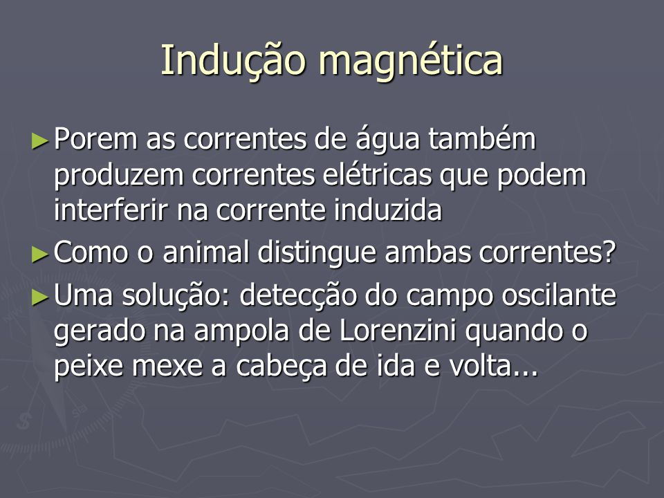 Indução magnética Porem as correntes de água também produzem correntes elétricas que podem interferir na corrente induzida.