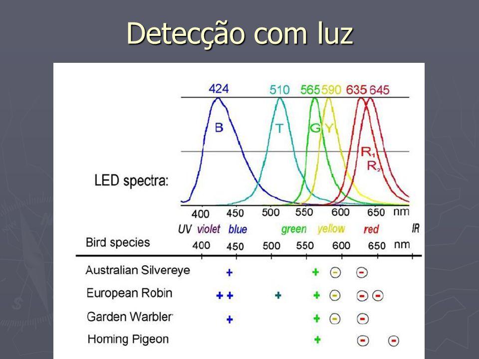 Detecção com luz