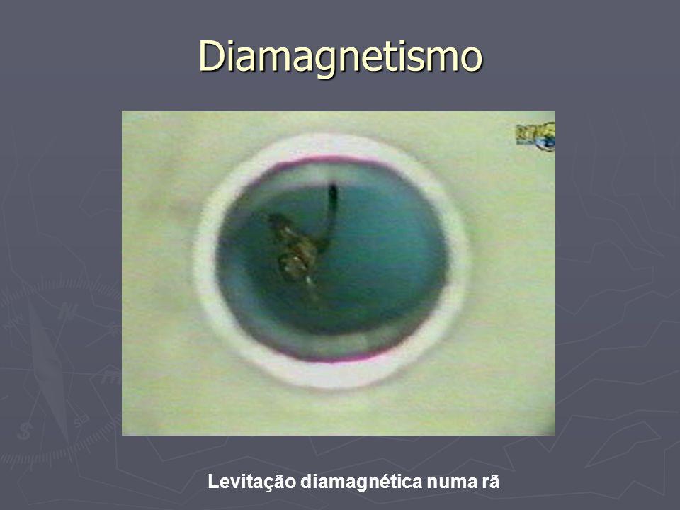 Diamagnetismo Levitação diamagnética numa rã