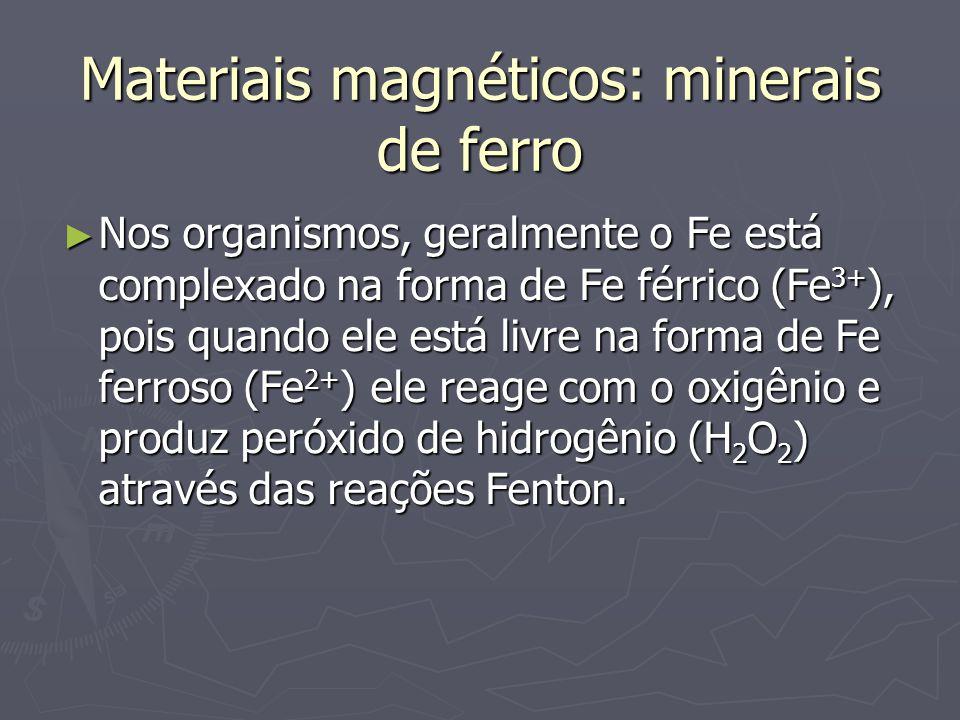Materiais magnéticos: minerais de ferro
