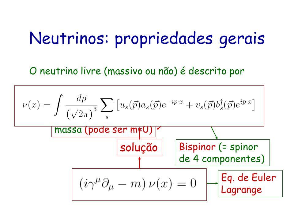 Neutrinos: propriedades gerais