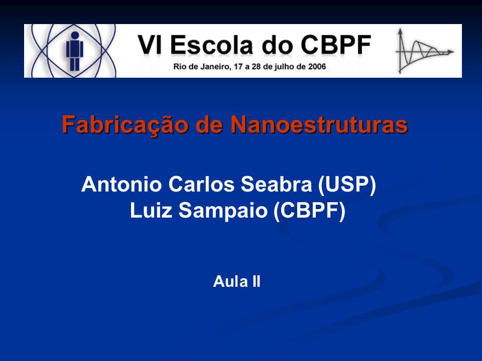 Antonio Carlos Seabra (USP)