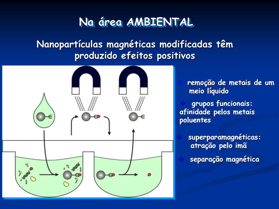 Na área AMBIENTAL Nanopartículas magnéticas modificadas têm produzido efeitos positivos. remoção de metais de um meio líquido.