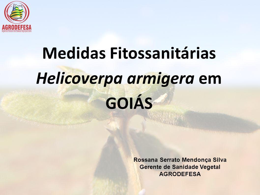 Helicoverpa armigera em GOIÁS
