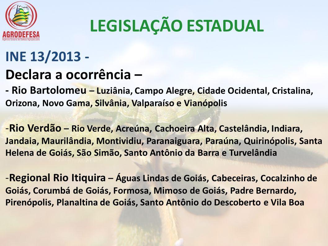 LEGISLAÇÃO ESTADUAL INE 13/2013 - Declara a ocorrência –