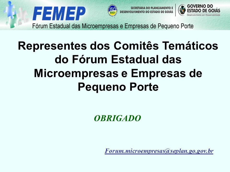 Representes dos Comitês Temáticos do Fórum Estadual das Microempresas e Empresas de Pequeno Porte