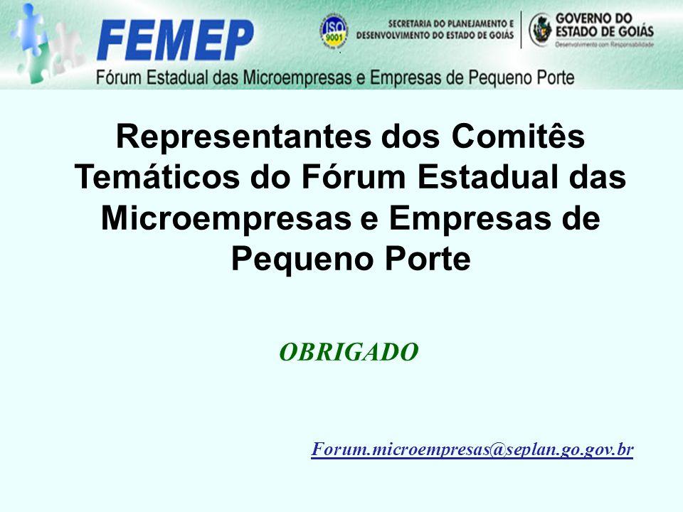 Representantes dos Comitês Temáticos do Fórum Estadual das Microempresas e Empresas de Pequeno Porte