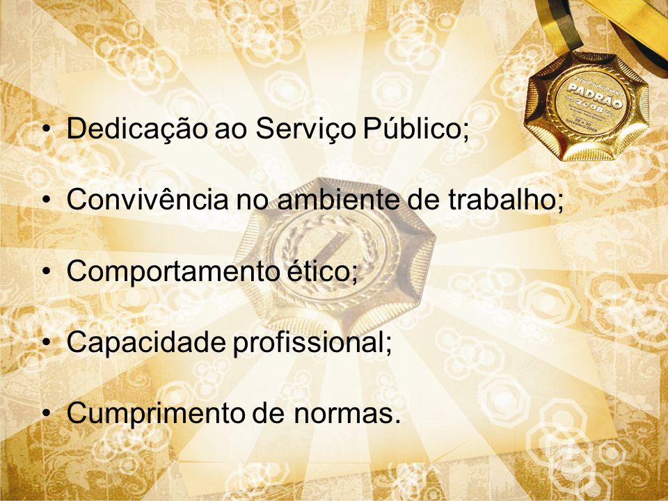 Dedicação ao Serviço Público;