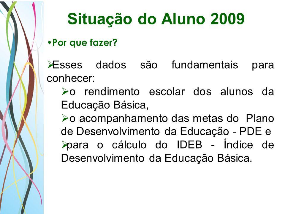 Situação do Aluno 2009 Esses dados são fundamentais para conhecer: