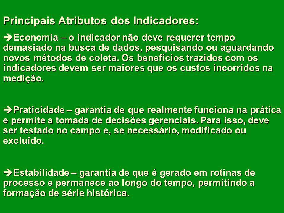 Principais Atributos dos Indicadores: