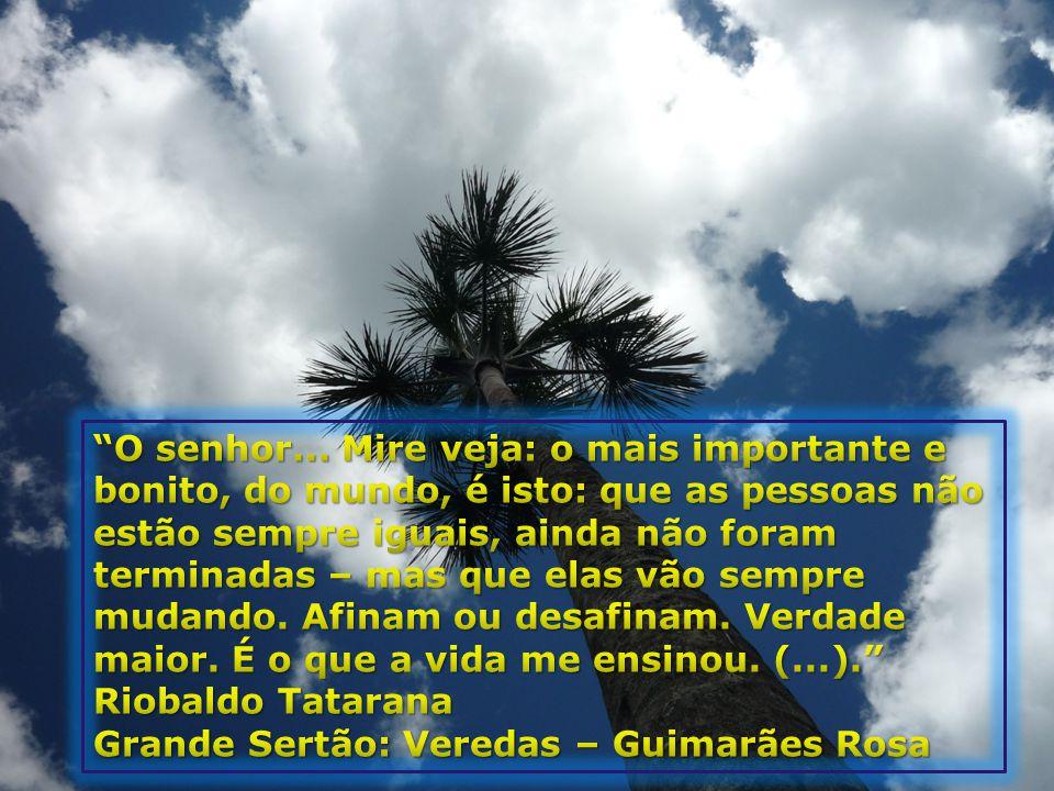 Grande Sertão: Veredas – Guimarães Rosa
