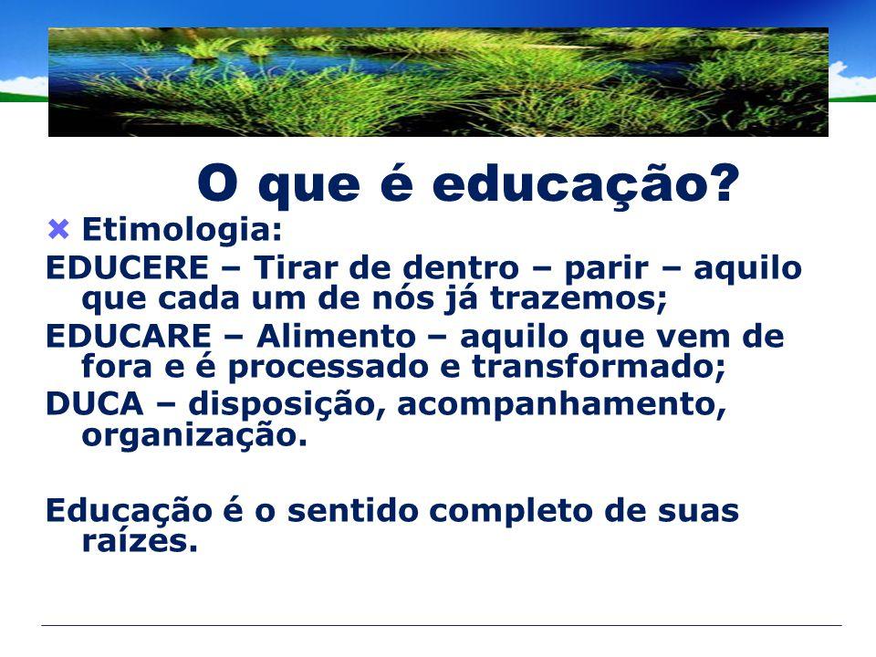 O que é educação Etimologia: