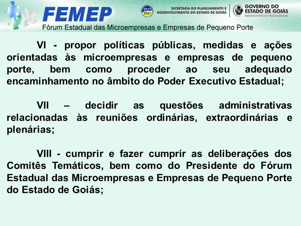 VI - propor políticas públicas, medidas e ações orientadas às microempresas e empresas de pequeno porte, bem como proceder ao seu adequado encaminhamento no âmbito do Poder Executivo Estadual;