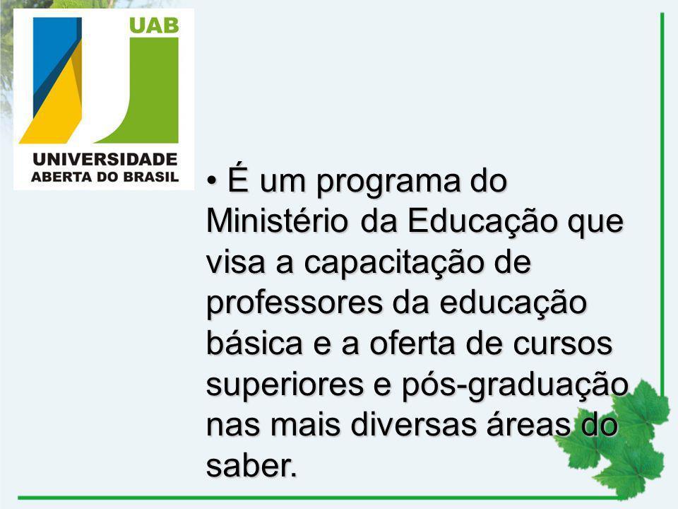 É um programa do Ministério da Educação que visa a capacitação de professores da educação básica e a oferta de cursos superiores e pós-graduação nas mais diversas áreas do saber.