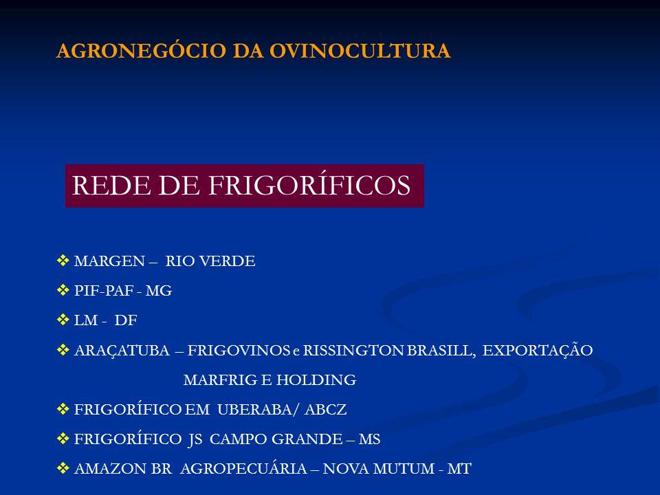 REDE DE FRIGORÍFICOS AGRONEGÓCIO DA OVINOCULTURA MARGEN – RIO VERDE