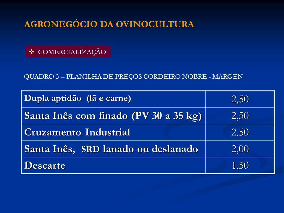 Santa Inês com finado (PV 30 a 35 kg) Cruzamento Industrial