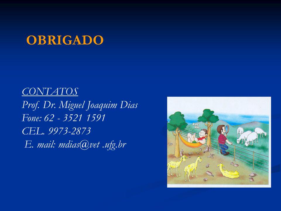OBRIGADO CONTATOS Prof. Dr. Miguel Joaquim Dias Fone: 62 - 3521 1591