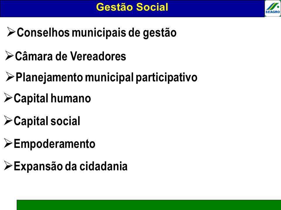 Gestão social Conselhos municipais de gestão Câmara de Vereadores