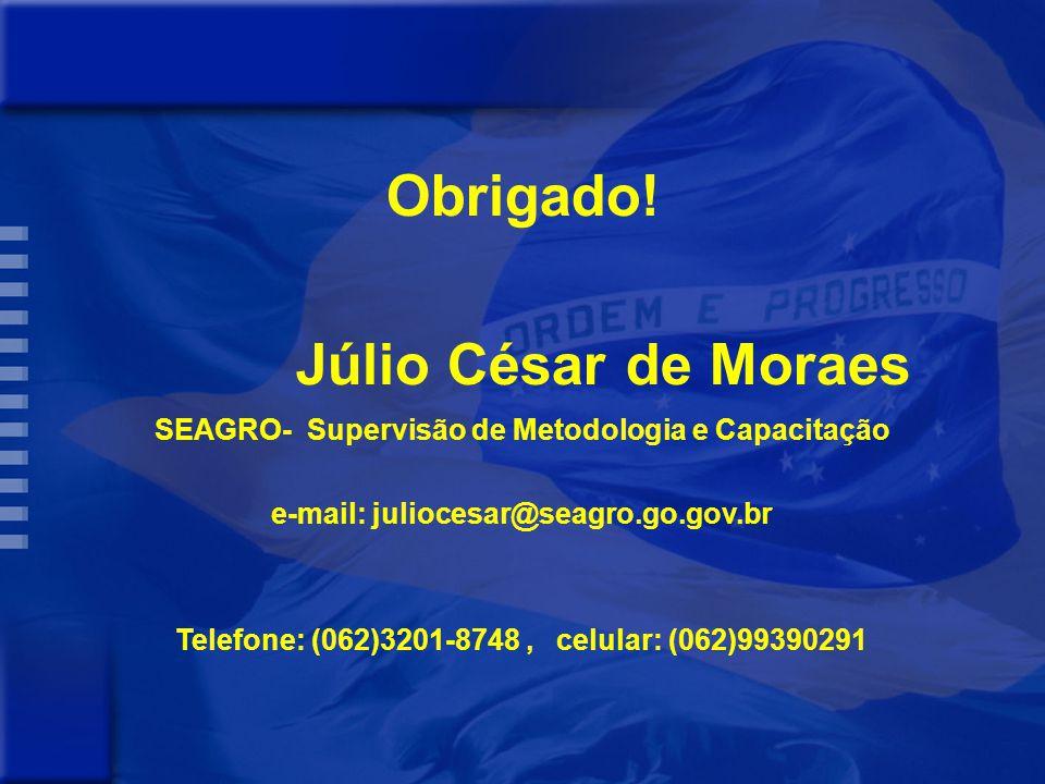 Obrigado! Júlio César de Moraes