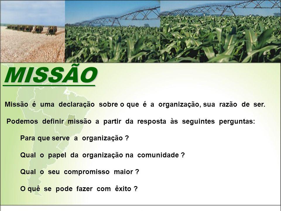 MISSÃO. A Missão é uma declaração sobre o que é a organização, sua razão de ser.