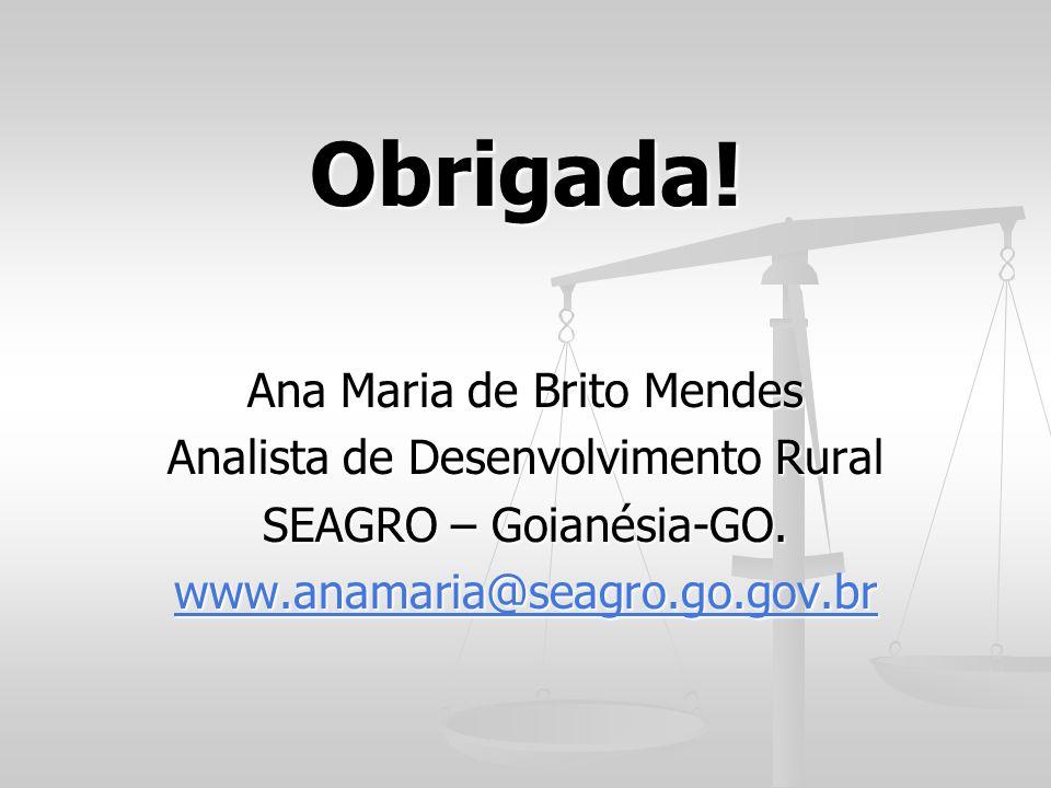Obrigada! Ana Maria de Brito Mendes Analista de Desenvolvimento Rural