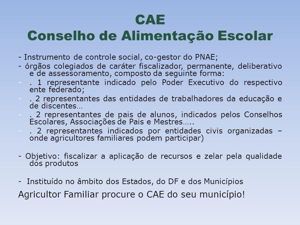 CAE Conselho de Alimentação Escolar