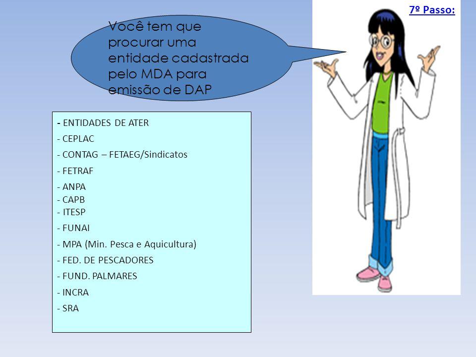 7º Passo: Você tem que procurar uma entidade cadastrada pelo MDA para emissão de DAP. - ENTIDADES DE ATER.