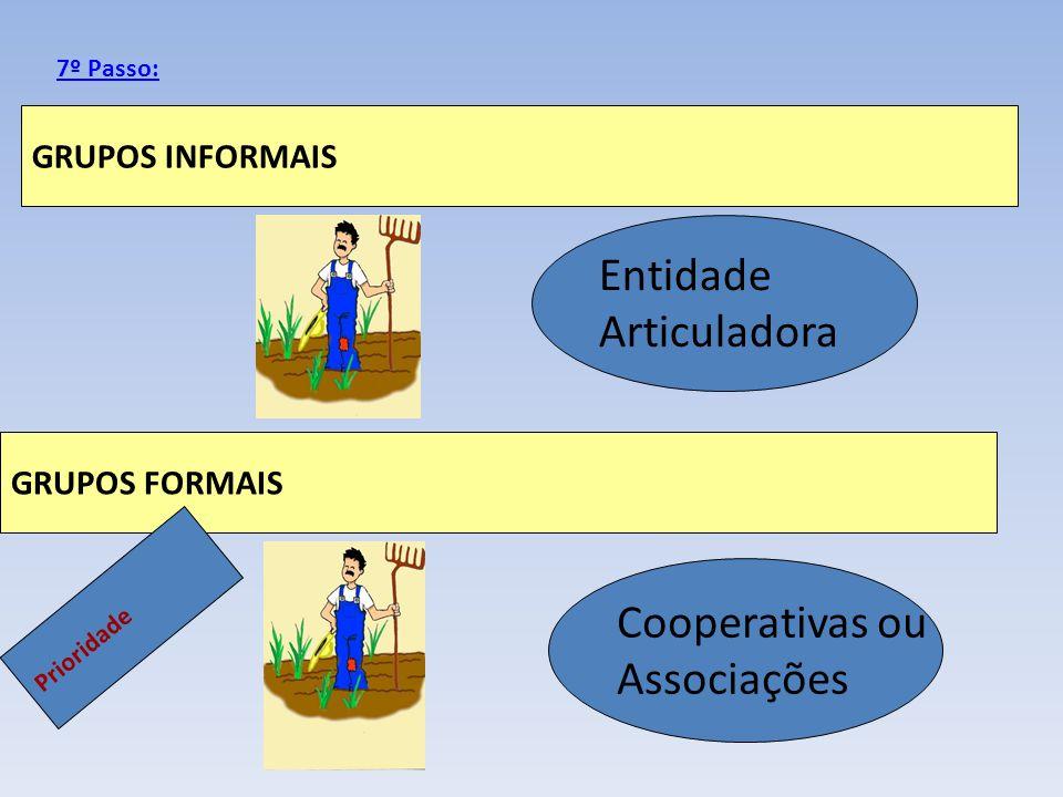 Entidade Articuladora Cooperativas ou Associações GRUPOS INFORMAIS