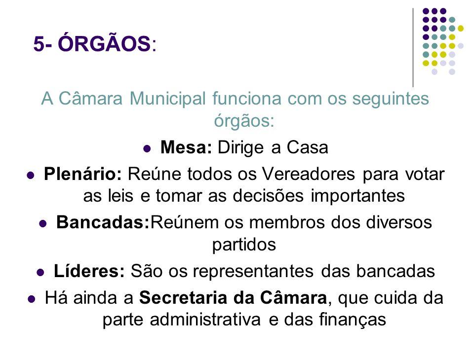 5- ÓRGÃOS: A Câmara Municipal funciona com os seguintes órgãos: