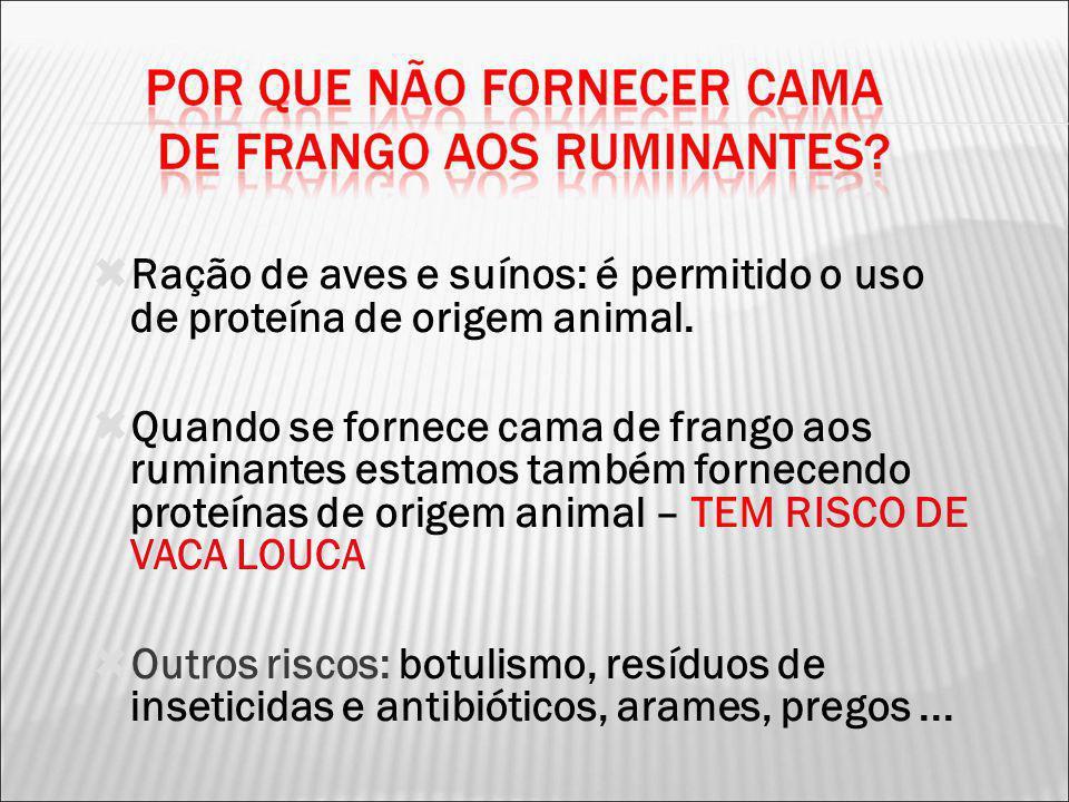 Ração de aves e suínos: é permitido o uso de proteína de origem animal.