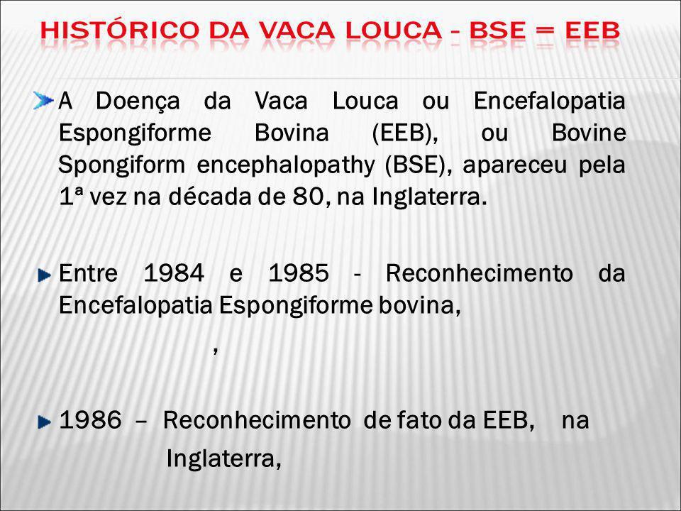 1986 – Reconhecimento de fato da EEB, na Inglaterra,