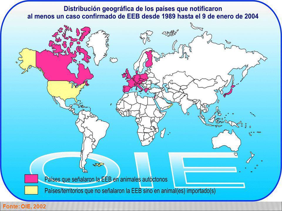 Fonte: OIE, 2002 8