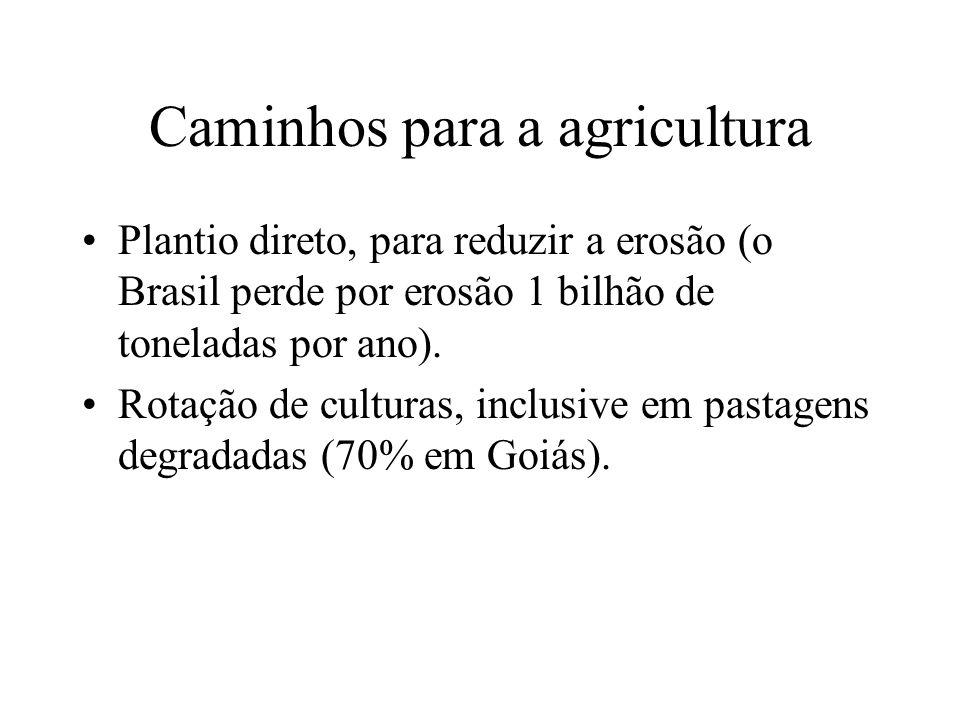 Caminhos para a agricultura
