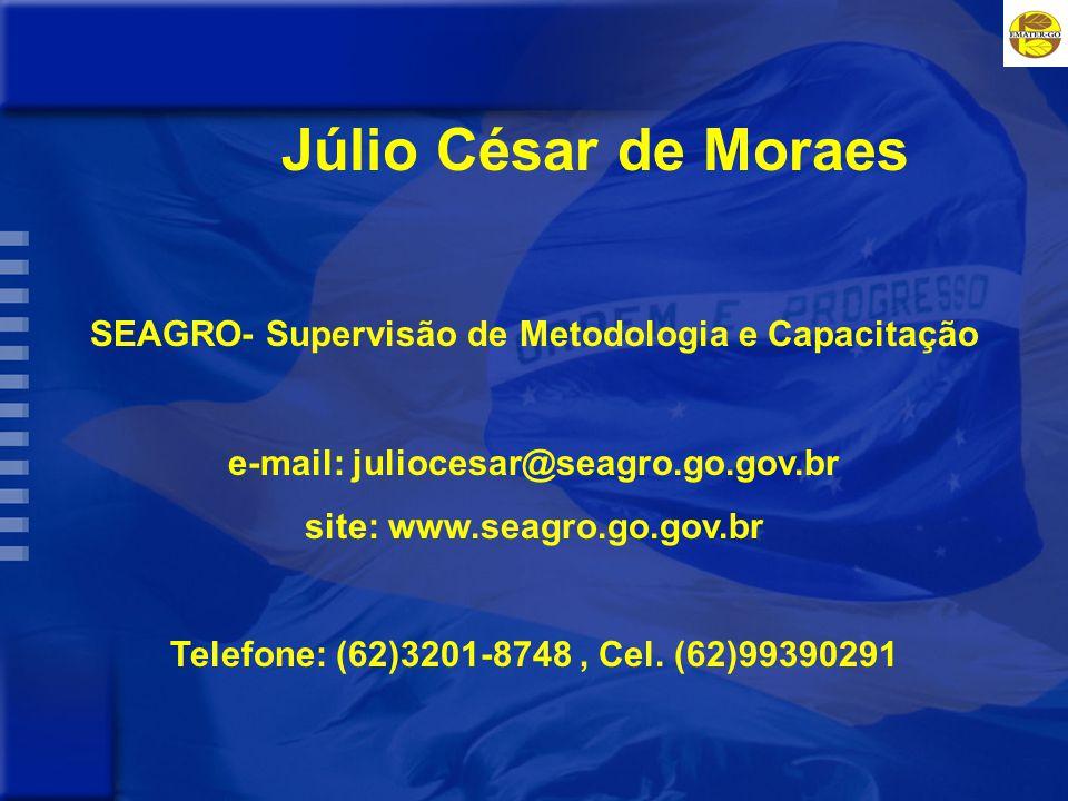 Júlio César de Moraes SEAGRO- Supervisão de Metodologia e Capacitação