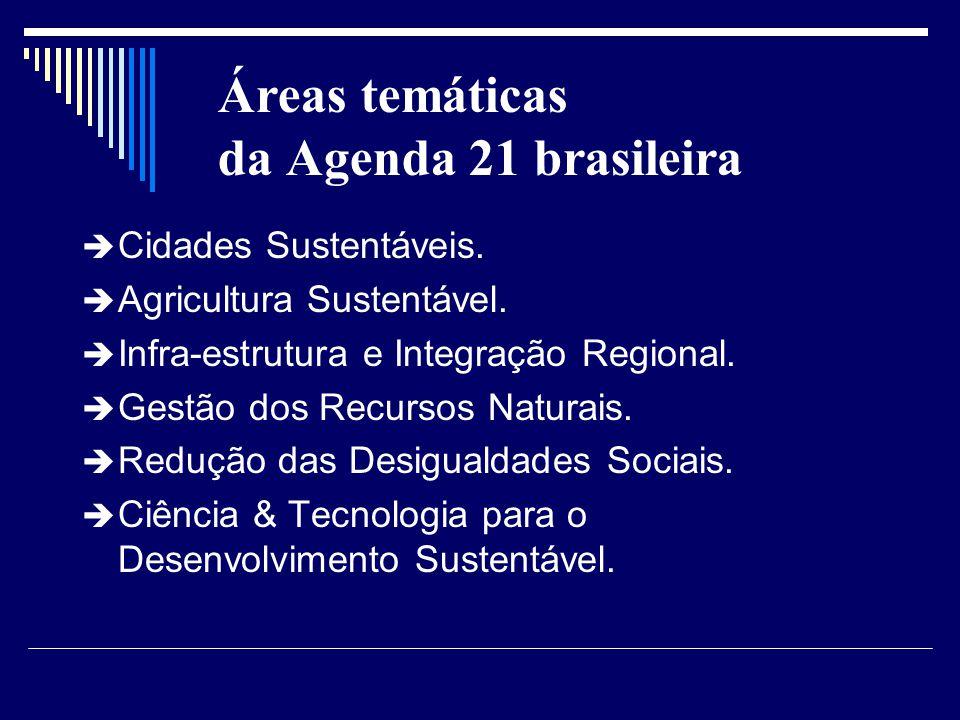 Áreas temáticas da Agenda 21 brasileira