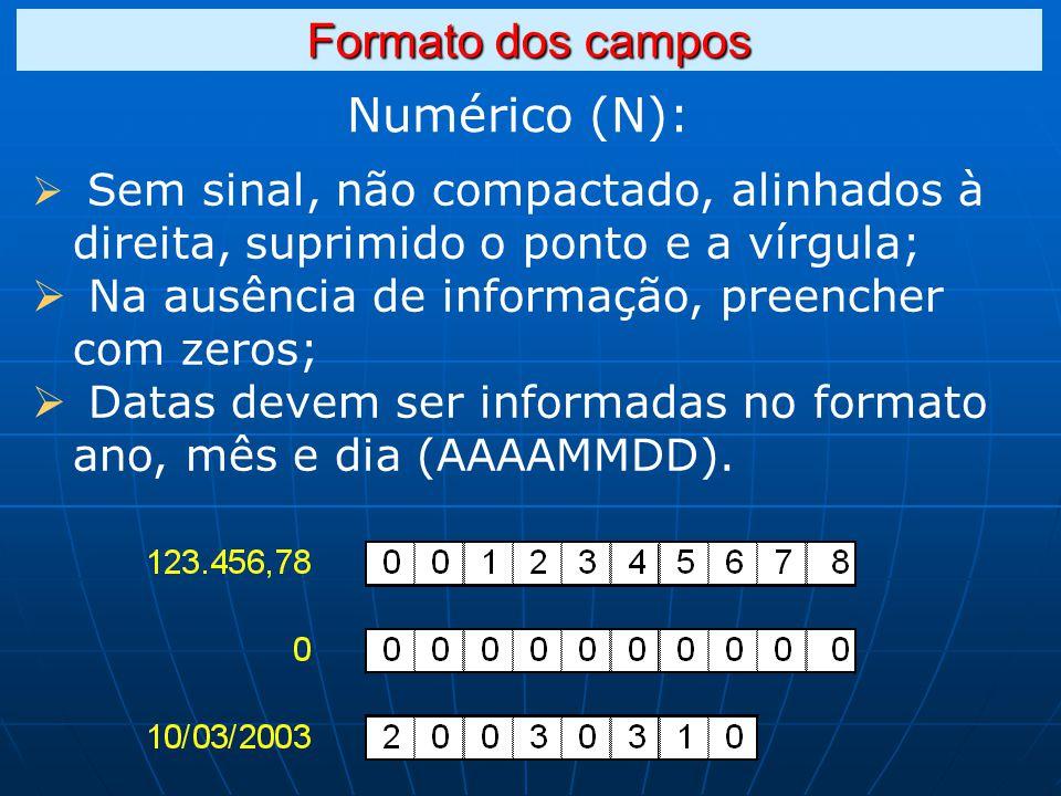 Formato dos campos Numérico (N):
